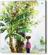 Myanmar Custom_05 Acrylic Print