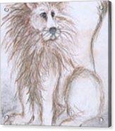 Mya's Lion Acrylic Print