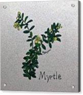 Myrtle Acrylic Print