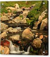 Myrtle Falls Acrylic Print