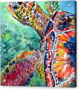 Myrtle The Turtle Acrylic Print