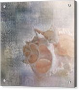 Mysterious Acrylic Print by Betty LaRue