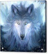 Mysterious Wolf Hand Painted Acrylic Print