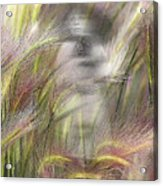Mysterious Lady Acrylic Print