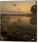 Mysterious Morning Time In Swamp Area. Landscape Acrylic Print