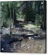 Mysterious Woods Acrylic Print