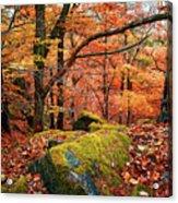 Mystery Of Autumn Acrylic Print