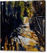 Mystery Path Acrylic Print