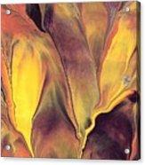 Mystic Fire 1 Acrylic Print