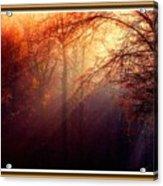 Mystic Forest At Dawn L B With Alternative Decorative Ornate Printed Frame Acrylic Print