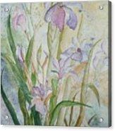 Mystic Iris Acrylic Print
