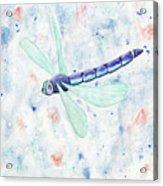Mystic Night Dragonfly Acrylic Print