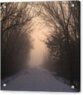 Mystic Trail Acrylic Print