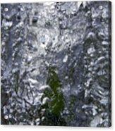 Mystical Forest 1 Acrylic Print