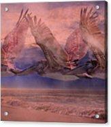 Mystical Trio Acrylic Print