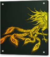 Myths Ablaze Acrylic Print