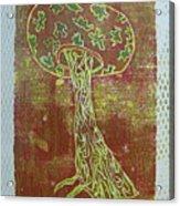 Myxomycetes 3 Acrylic Print