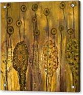 Myxomycetes Acrylic Print