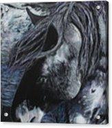 Nahokey Acrylic Print
