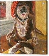 Namaste Dog Acrylic Print