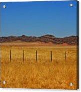 Namib Desert 3 Acrylic Print