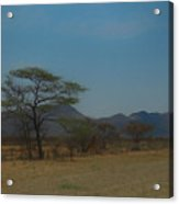 Namibia Landscape Acrylic Print