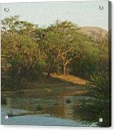 Namibian Waterway Acrylic Print