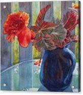Nancy's Begonias Acrylic Print