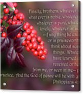 Nandina Berries Phil.4 V 8-9 Acrylic Print