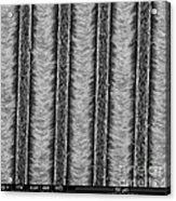 Nanowires, Nanowalls, Sem Acrylic Print