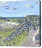 Nantucket June Dunes I Acrylic Print