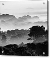 Nantucket Middle Moors In Fog Acrylic Print