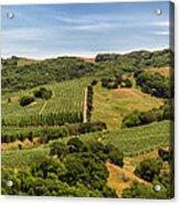 Napa Valley California Panoramic Acrylic Print