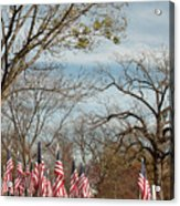 6 Of 6 Naperville Healing Field Of Honor At Rotary Hill Acrylic Print