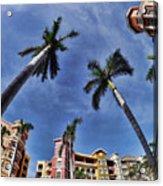 Naples Florida Vii Acrylic Print