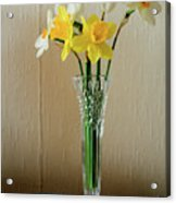 Narcissus In Glass Vase Acrylic Print