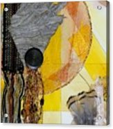 Native America Acrylic Print