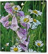 Native Flowers Acrylic Print