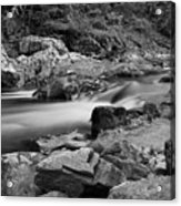 Natural Contrast Black And White Acrylic Print