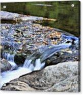 Natural Flow Acrylic Print