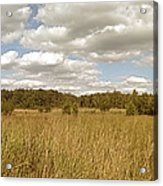 Natural Meadow Landscape Panorama. Acrylic Print
