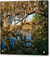 Naturally Florida Acrylic Print