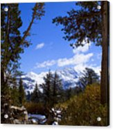 Naturally Framed Acrylic Print by Chris Brannen