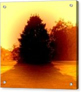 Nature 2 Acrylic Print