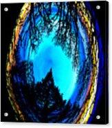 Nature Egg Acrylic Print
