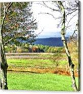 Nature Has Reclaimed The Lake Acrylic Print