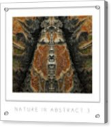 Nature In Abstract 3 Poster Acrylic Print