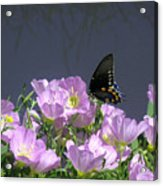 Nature In The Wild - Profiles By A Stream Acrylic Print