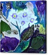 Nature Ll  Collage Acrylic Print