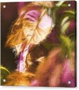 Nature Pastel Artwork Acrylic Print